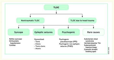 Syncope in the context of transient loss of consciousness