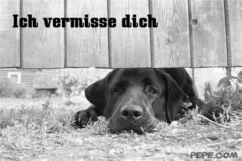 119 best images about Gute Besserung on Pinterest   How go