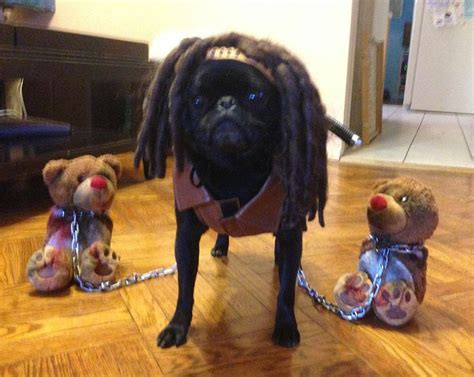 This year's halloween costume, Pixel as Michonne from The