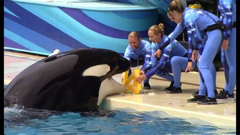 Happy 14th Birthday, Nakai! (Seen during One Ocean at