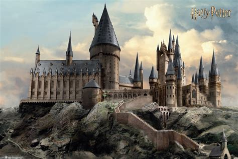 Harry Potter Prefrences - Your Quidditch Position - Wattpad