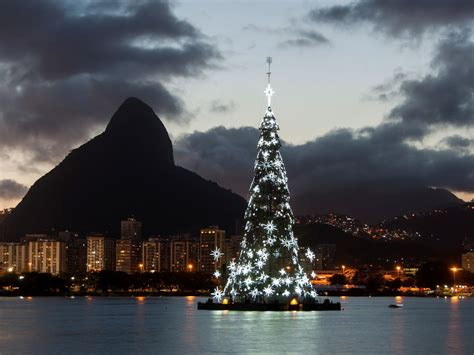 The Best Christmas Trees in the World - BNL