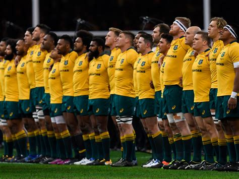 Australia Rugby World Cup Fixtures, Squad, Group, Guide